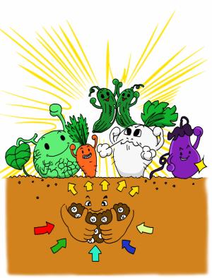 ベントナイトCECは土の胃袋野菜も元気
