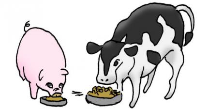 カサネン工業家畜飼料用