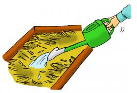 カサネン工業くみあい水稲用育苗培土キングソイル(使い方-は種後の灌水および殺菌処理)